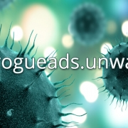 Eliminar-malware-rogueads-unwanted-ads-de-WordPress
